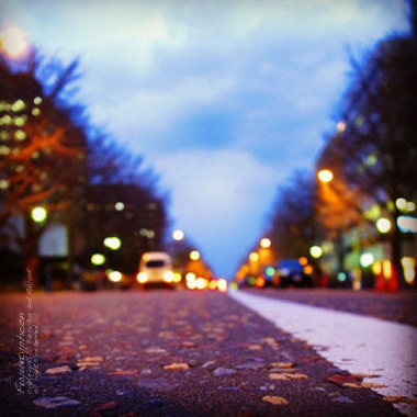 20120223_Instagram14_380380.jpg